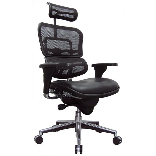 Ergohuman Plus Elite – Leather Seat with Mesh Back