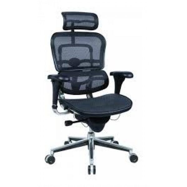 Ergohuman Plus Luxury – Mesh Seat with Mesh Back
