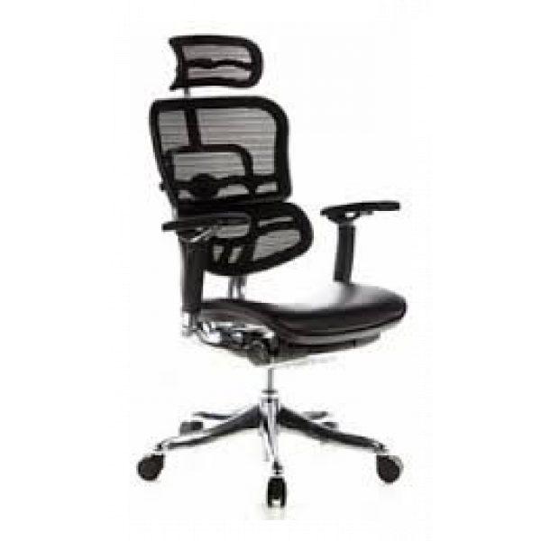 Ergohuman Plus Luxury – Leather Seat with Mesh Back